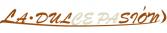 パッション 宗像市 美容室